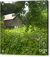 Framed In Green Acrylic Print by Paul W Faust -  Impressions of Light