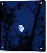 Framed Moon Acrylic Print by Edward Hamilton