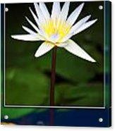 Framed Serenity Acrylic Print