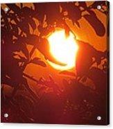 Framed Sun Acrylic Print