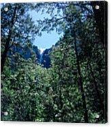 Framing A Waterfall Acrylic Print