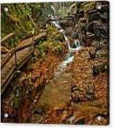 Franconia Notch Lush Greens And Rushing Waters Acrylic Print