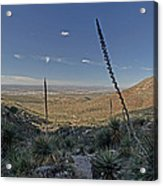 Franklin Mountains Landscape 4 Acrylic Print