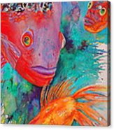 Freddy Fish And Friends Acrylic Print