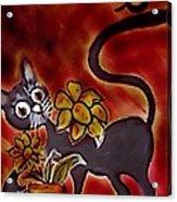 Freddy The Cat Acrylic Print