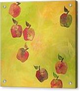 Free Apples Acrylic Print