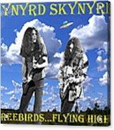 Freebirds Flying High Acrylic Print
