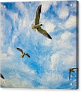 Freedom Impasto Acrylic Print