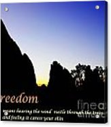 Freedom Means 002 Acrylic Print
