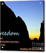 Freedom Means 003 Acrylic Print