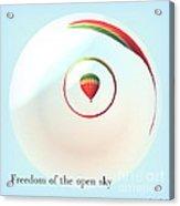 Freedom Of The Open Sky Acrylic Print