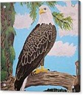 Freedom's Pride Acrylic Print