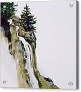 Freefall Acrylic Print