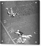 Freefalling Nova Scotia Skydivers In Stewiacke Acrylic Print