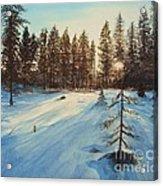 Freezing Forest Acrylic Print