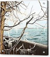 Freezing Rain Acrylic Print
