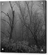 Freezing Rogue Valley Fog At Night Acrylic Print