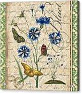 French Botanical Damask-b Acrylic Print