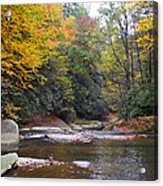 French Broad River In Fall Acrylic Print