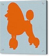 French Poodle Orange Acrylic Print