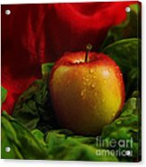 Fresh Apple On Silk Acrylic Print