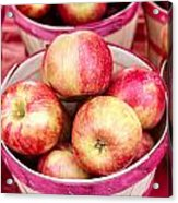 Fresh Apples In Buschel Baskets At Farmers Market Acrylic Print by Teri Virbickis