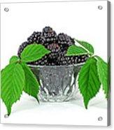 Fresh Blackberries In Glass Bowl Acrylic Print