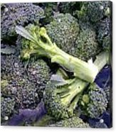 Fresh Broccoli Acrylic Print