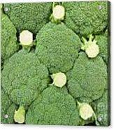 Fresh Broccoli Pattern Acrylic Print