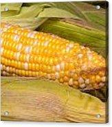 Fresh Corn At Farmers Market Acrylic Print by Teri Virbickis