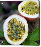 Fresh Cut Lilikoi Fruit Acrylic Print