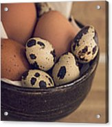 Fresh Eggs Acrylic Print
