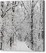 Fresh Fallen Snow Acrylic Print