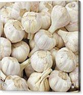 Fresh Garlic Bulbs Acrylic Print