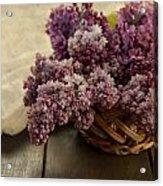 Fresh Lilacs In Brown Basket Acrylic Print