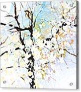 Fresh Pick No.394 Acrylic Print