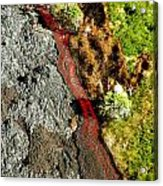 Fresh River Of Lave Acrylic Print