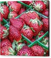 Fresh Strawberries  Acrylic Print