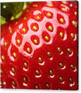 Fresh Strawberry Close-up Acrylic Print
