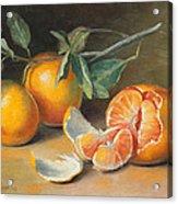 Fresh Tangerine Slices Acrylic Print by Theresa Shelton