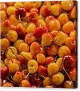 Fresh Yellow Cherries Acrylic Print