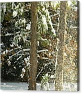 Freshly Blowing Snow Acrylic Print