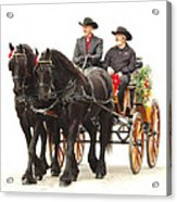 Friesian Carriage Acrylic Print
