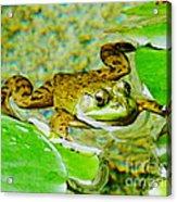 Frog  Abby Aldrich Rockefeller Garden Acrylic Print