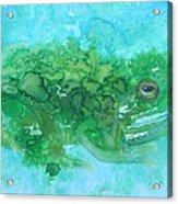 Frog And Fly Blues Acrylic Print
