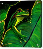 Frog And Leaf Acrylic Print