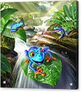 Frog Capades Acrylic Print