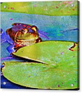 Frog - On A Water Lily Pad Acrylic Print