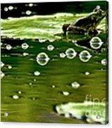 Frog Pond Space Galaxy Acrylic Print