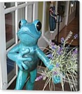 Frog Suitor Acrylic Print